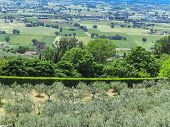 View of Assisi valley, Umbrien, Italy