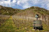 Historic Wine Press On Vineyard