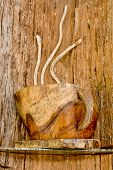 Wood Carving For Furnishing