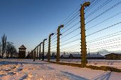 picture of auschwitz  - Fence around nazi concentration camp of Auschwitz Birkenau Poland