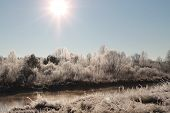 picture of paysage  - beautiful shine view on winter sparkling bank of the river - JPG
