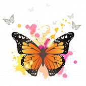 Monarch butterfly over bright background