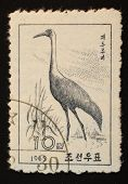 North Korea - 1965: Postal Stamp Printed In North Korea Shows An Image Of An Heron On A White Backgr