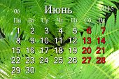 Calendar For June 2015 In Russian On The Background Of Fern