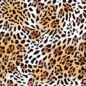 Far Eastern leopard fur seamless vector print