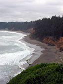 foto of bluff  - A brown beach and ochre bluffs border the Pacific Oregon coast - JPG