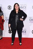 LOS ANGELES - JAN 07:  Melissa McCarthy arrives to the People's Choice Awards 2014  on January 7, 2015 in Los Angeles, CA