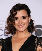 LOS ANGELES - JAN 07:  Cote de Pablo arrives to the People's Choice Awards 2014  on January 7, 2015 in Los Angeles, CA