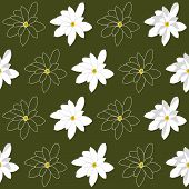 Seamless Pattern with Bright White Magnolia Flowers on a green Green Background.