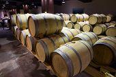 Wine Barrels Cellar Bulgaria