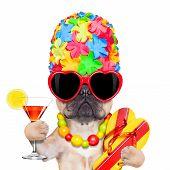 Tropical Vacation Dog