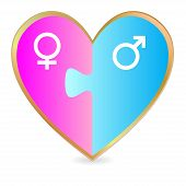 Gender heart puzzle