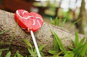 pic of valentine candy  - Candy valentines hearts on timber at the park - JPG