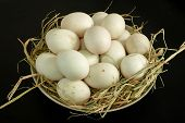 picture of duck  - Duck eggs for cooking food cuisine healthy - JPG