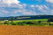 stock photo of plow  - Plowed and green fields - JPG