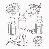 foto of walnut  - Healthy oil set in outline style - JPG