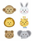 foto of cute animal face  - faces baby animals isolated over white background - JPG