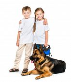 foto of sheep-dog  - happy children with a shepherd dog on a white background isolated - JPG
