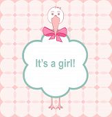 foto of stork  - baby girl announcement card with a stork - JPG