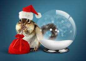 stock photo of chipmunks  - Funny animal chipmunk dressed as santa with snow ball christmas concept - JPG