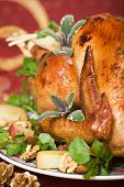 picture of christmas dinner  - christmas turkey served with herbs baked potatoes and walnuts on holiday table - JPG