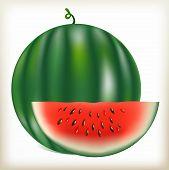 Постер, плакат: water melon