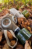 Old Gasmask In Autumnal Leaves
