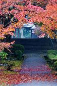 Colorful Autumn Foliage Framing A Japanese Temple Walkway