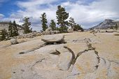 Cracked rock, Olmsted Point, Yosemite