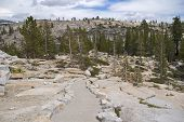 Olmsted Trail, Yosemite