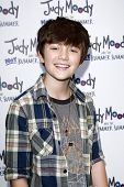 LOS ANGELES - JUN 4:  Greyson Chance arriving at 'Judy Moody And The NOT Bummer Summer' Premiere at