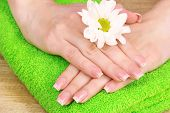 picture of nail salon  - Beautiful hand with perfect nail french manicure  on towel background - JPG