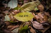 Yellow Leaf With Inscription The End On Background poster