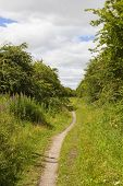 Country Footpath poster