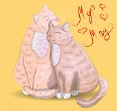 Two Cats With Hearts And An Inscription I Have For You Moore, The Concept Of Love, Romantic Love, Va poster