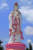 Isolated Of Great Buddha Statue Of Guanyin Stand Series Standing White Dress With Pink  Be Standing  poster