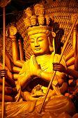 Kuan Yin image of buddha