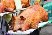 Golden Whole Roasted Pig. Spit Roasting Is A Traditional International Luau Method Of Cooking A Whol poster