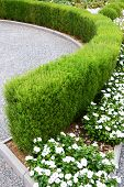 Beautiful Design Of The Yard. Blooming Flower Beds And Hedges. Flowers And Ornamental Shrubs In The  poster