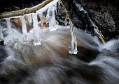 Stream in winter with icicles hanging from tree branches