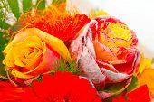 Boquet of flower