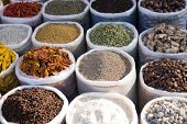 The Spices Of India