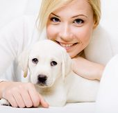 Close up of white puppy of Labrador lying on the sofa with woman in white sweater