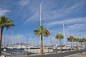 Canary Islands Yacht Marina