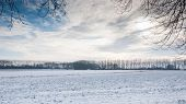 Rustic Rural Snowy Landscape In The Netherlands.