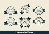 Retro vintage labels. Editable format in portfolio.