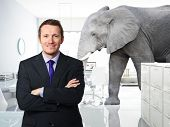 smiling man and elephant in modern �?�£D office