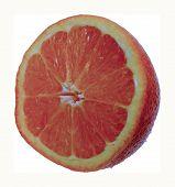 Orange Half 1 Copy