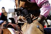 Old West Mounted Rider 2