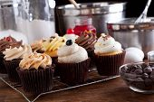 Variety Of Gourmet Cupcakes